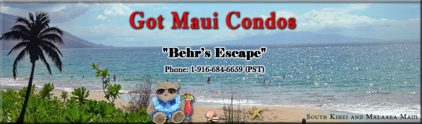 Maui, Hawaii, Condos, Kihei Kai Nani, Kamaole Sands, Beach Park, South Maui, Beaches, , Discounts, Vacation Rentals by Owner